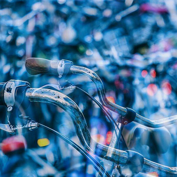 Выставка «Велокульт»
