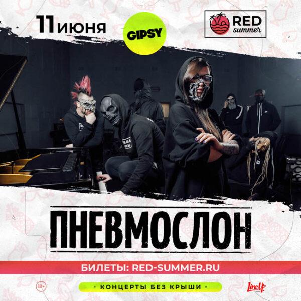 Концерт группы ПНЕВМОСЛОН 11 июня