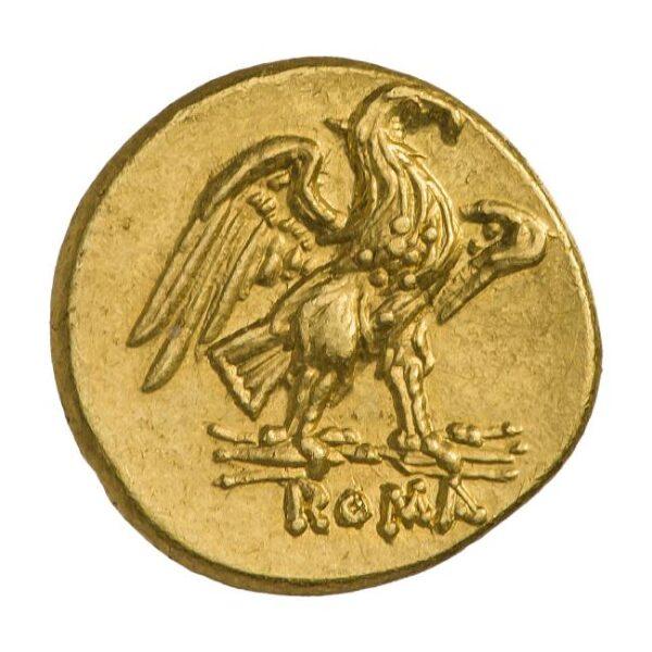 "Выставка ""Животные на монетах"""