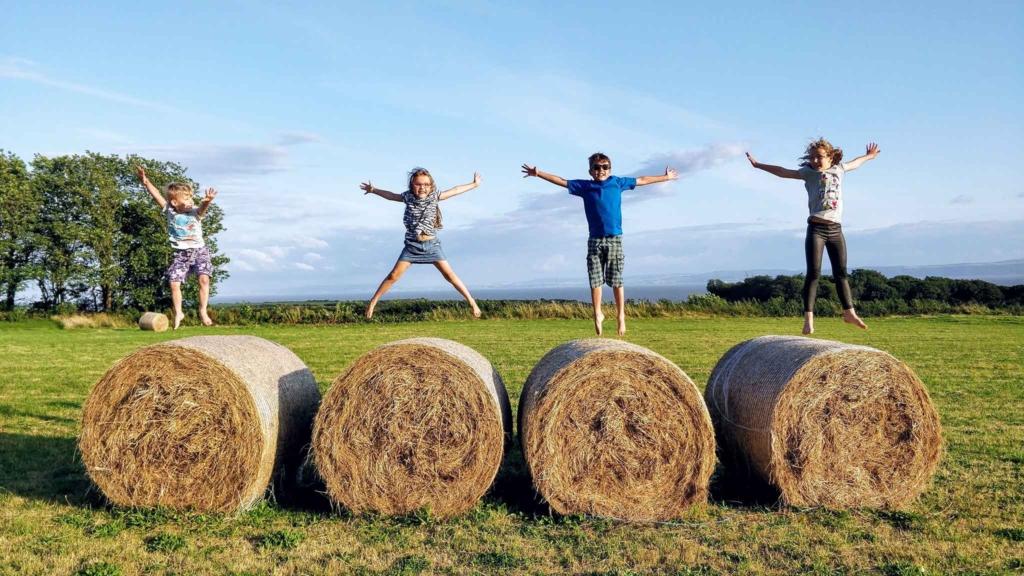 дети прыгают на сене