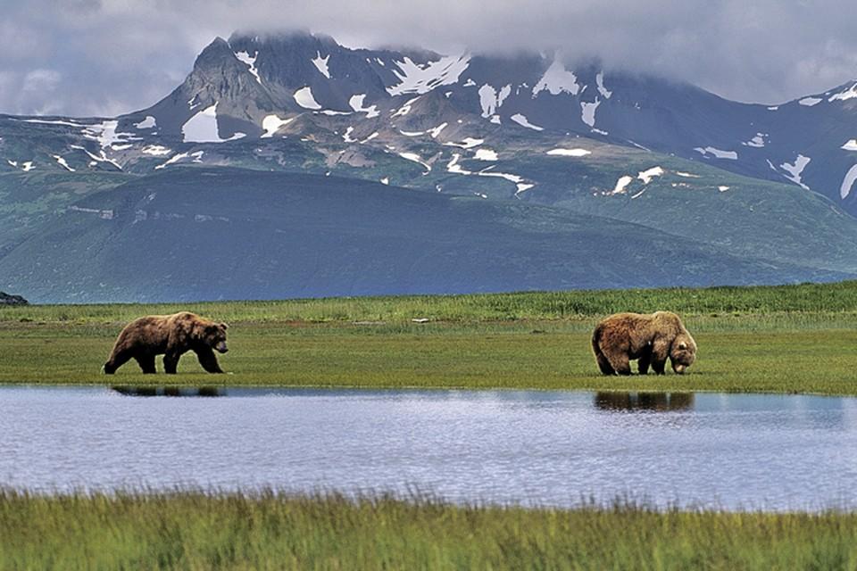 Территория Аляски - 1 миллион 519 тысяч квадратных километров.