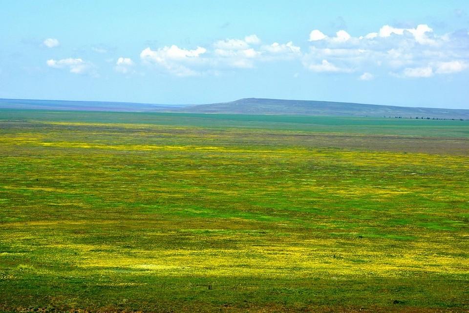 Реферат на тему заказник общего государственного значения большой каньон крыма наукоград новосибирск заказ реферата