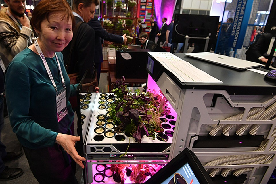 Это «Зеленый бар» - гидропонная автоматизированная бытовая установка по выращиванию зеленых листовых овощей