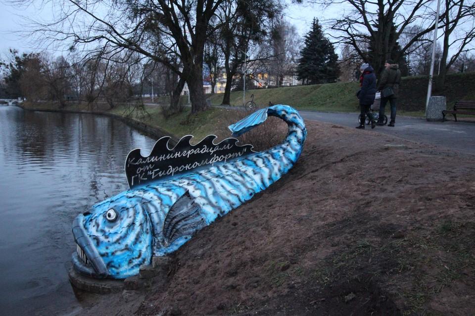 Синяя рыба на Нижнем озере понравилась не всем
