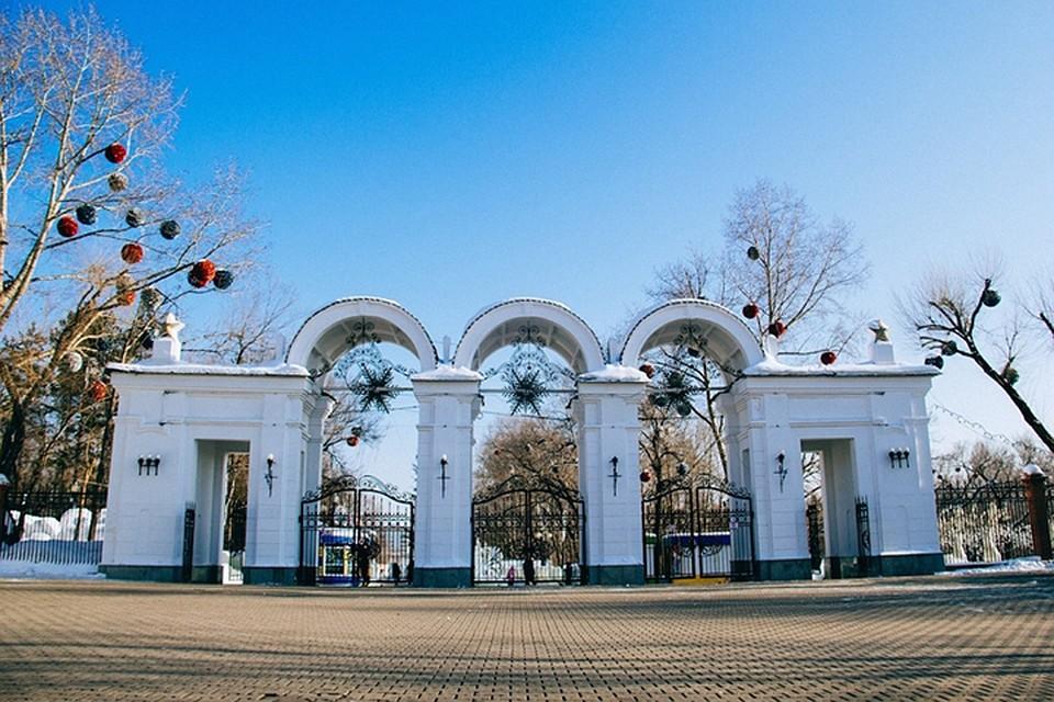 фото парк динамо хабаровск прикольные