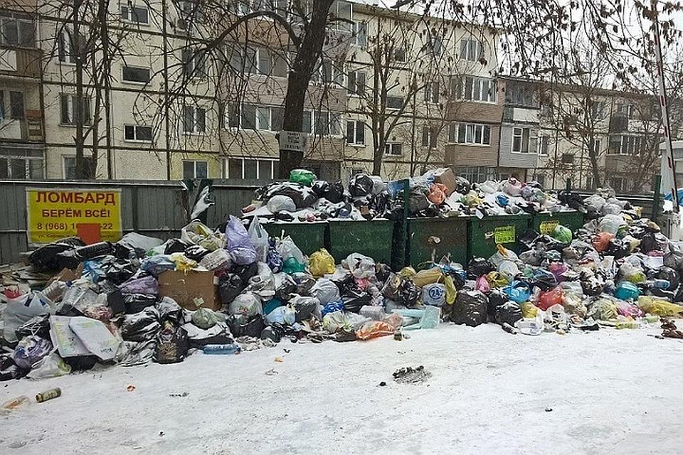 0138c8824155 Австралийский психолог Роб Кернау рассказал владивостокцам, почему люди  мусорят и как предотвратить это
