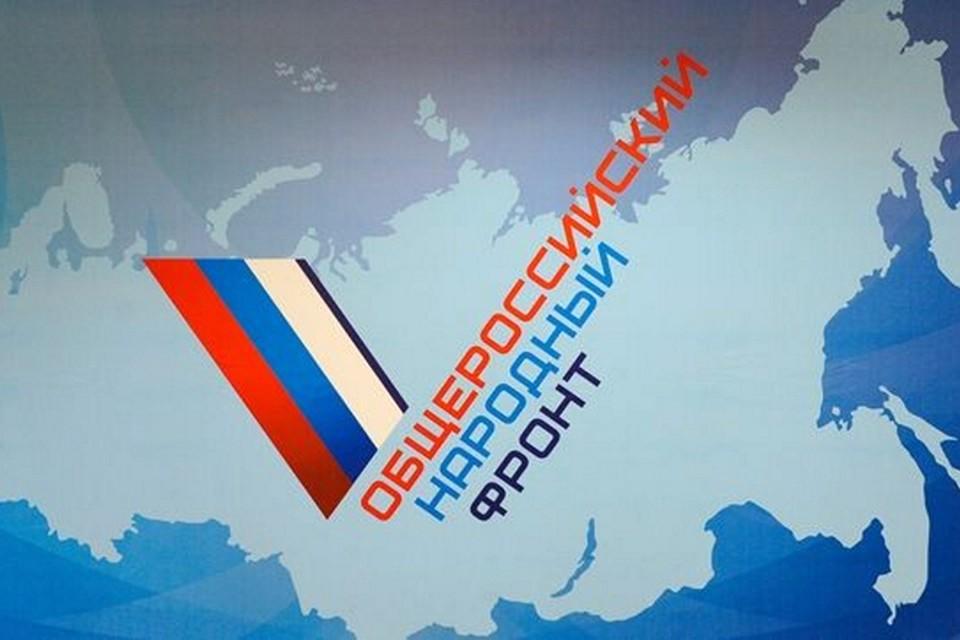 Общероссийский народный фронт – это общественное движение, созданное в мае 2011 года по инициативе президента РФ Владимира Путина