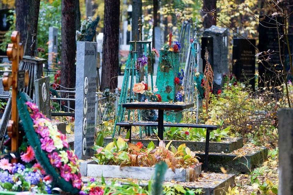 Правила при знакомстве с хозяинами кладбищь