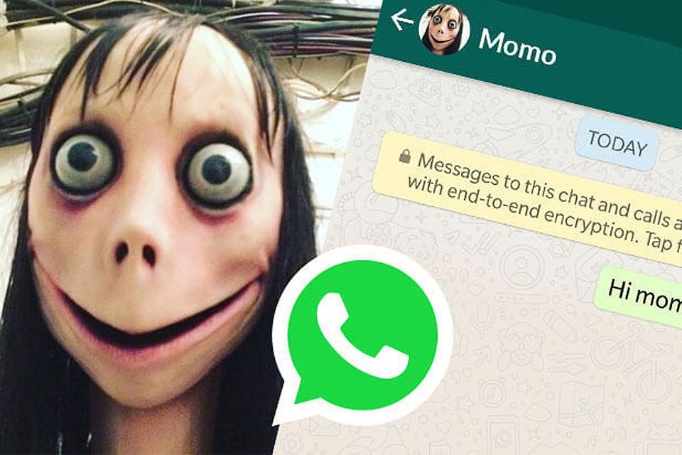 Опасная Momo родом из Южной Америки.
