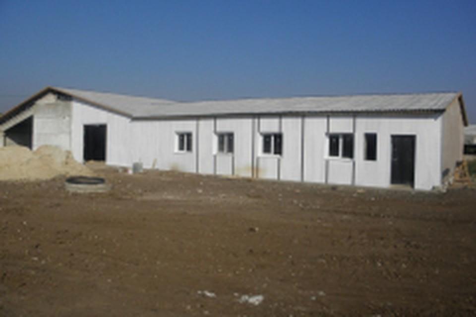 """Фото: Издательство """"Пресса"""". Ферма уже почти построена."""