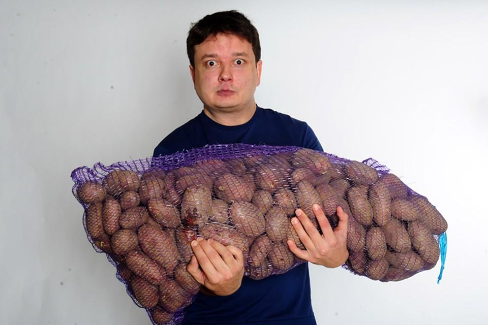 Самое распространенное уберждение, что корнеплоды, в том числе картофель, активно накапливают пестициды, которые используют для защиты растений от вредителей