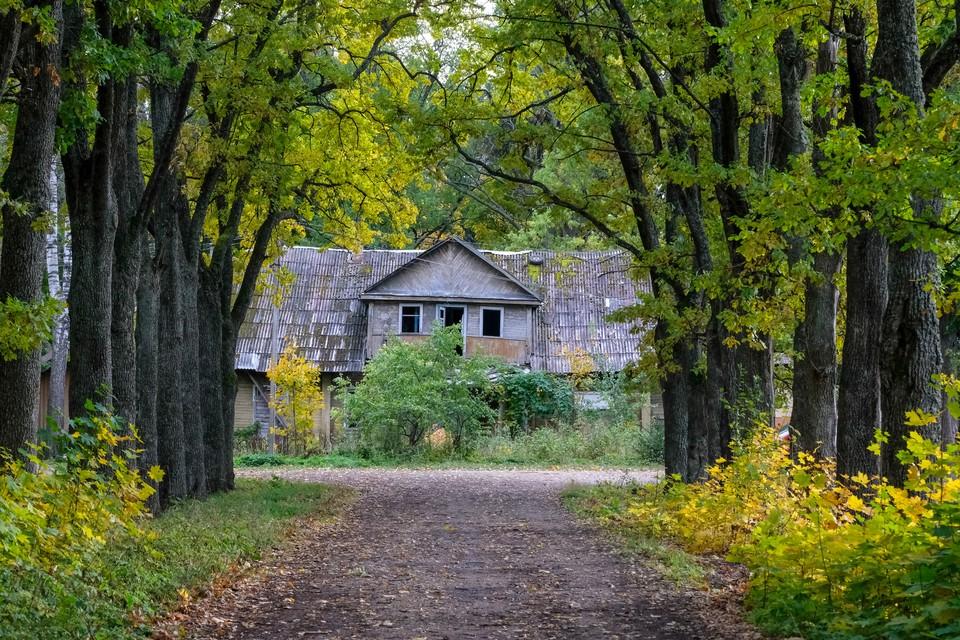 Ежегодно жемчужина деревянного зодчества теряет старинные имения в пожарах и грабежах