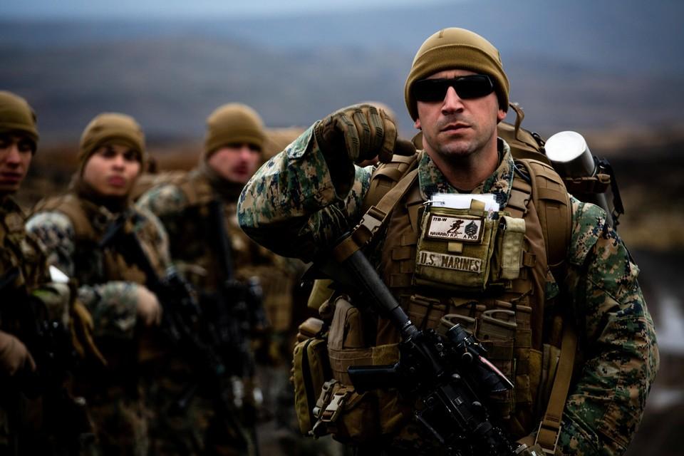 НАТО и союзники альянса будут демонстрировать России свои возможности по отражению вторжения в Северную Европу