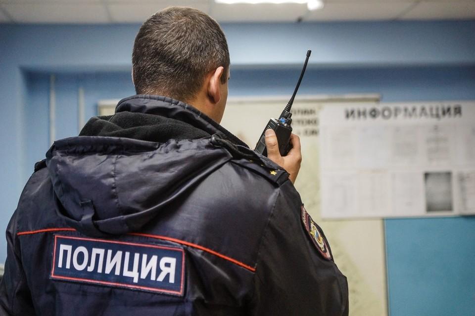 Преступника ищет полиция Тольятти