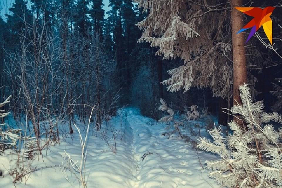 Тело мужчины много лет покоилось в лесу.
