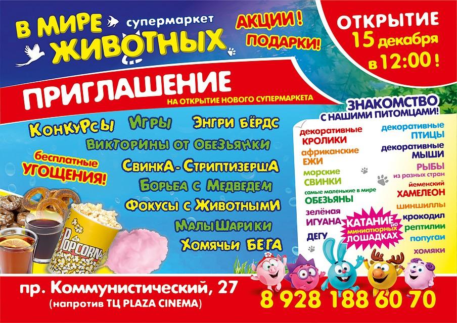 501e08c0e В Ростове-на-Дону открывается зоомаркет «В мире животных». Фото: