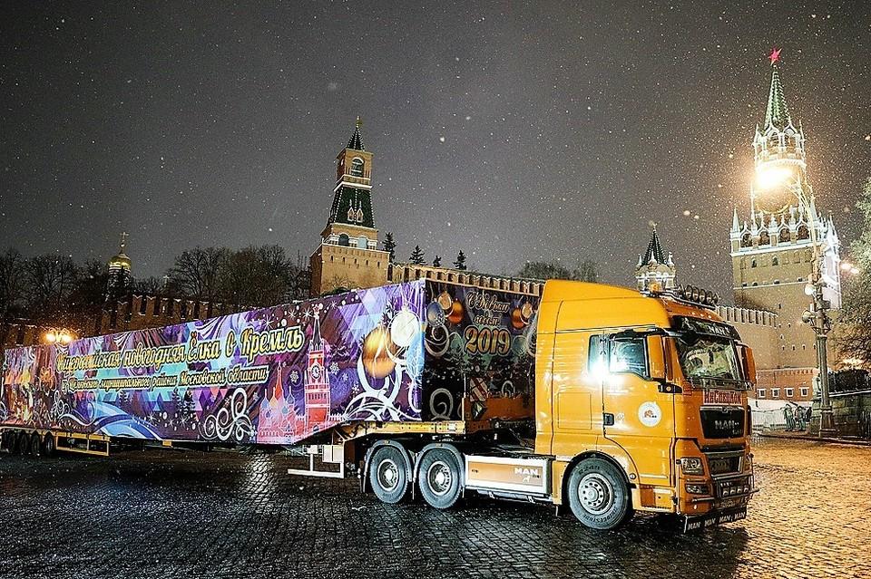 В Кремль доставили главную ель страны для встречи Нового года. Фото: Сергей Бобылев /ТАСС