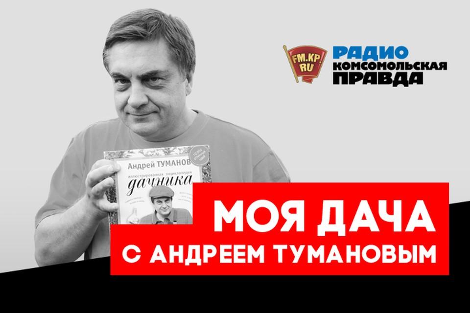 Полезные советы от главного дачника страны Андрея Туманова всем слушателям Радио «Комсомольская правда»