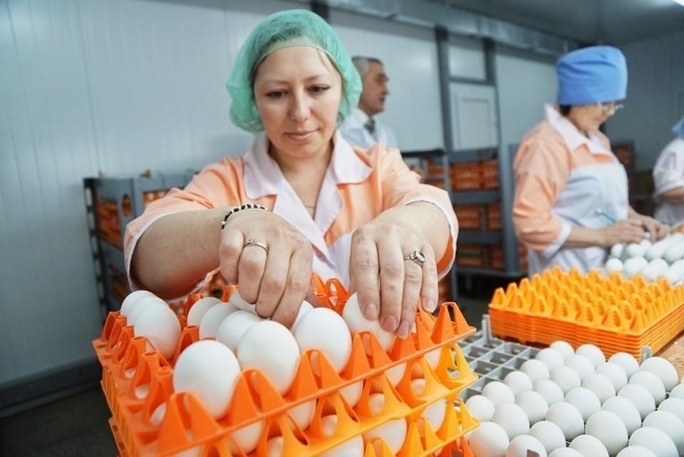 Стоимость яиц в последнее время скачет то вниз, то вверх