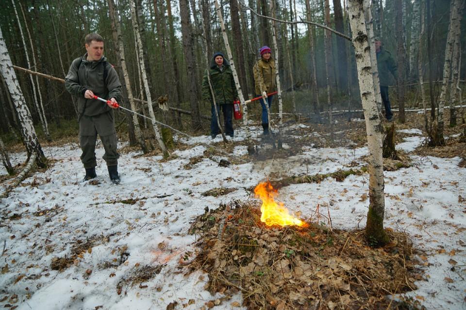 В Хабаровском крае ввели противопожарный режим из-за малоснежной зимы
