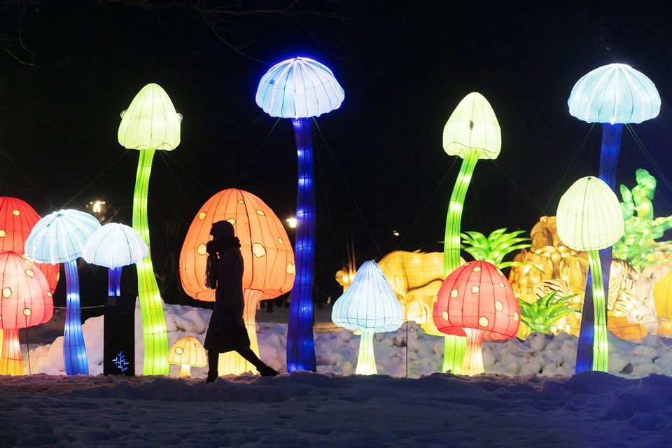 Фестиваль гигантских китайских фонарей.