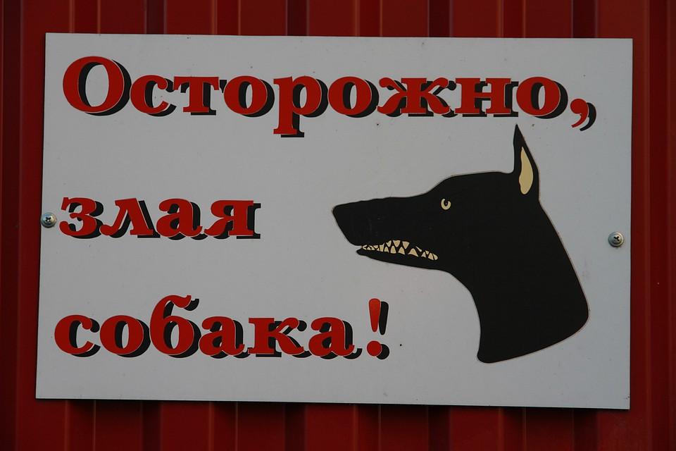 Нота бена абакан от 30 08 2012 игровые автоматы как открыть игровые автоматы в украине
