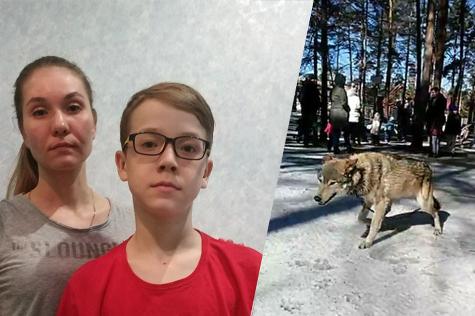 Слева: Дарья Фролова и ее сын Лев, фото из архива Фроловых. Справа: волк Воланд, кадр из видео Сергея Панасенко.
