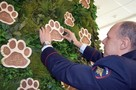 Полицейские стали крестными дальневосточного леопарда Степы
