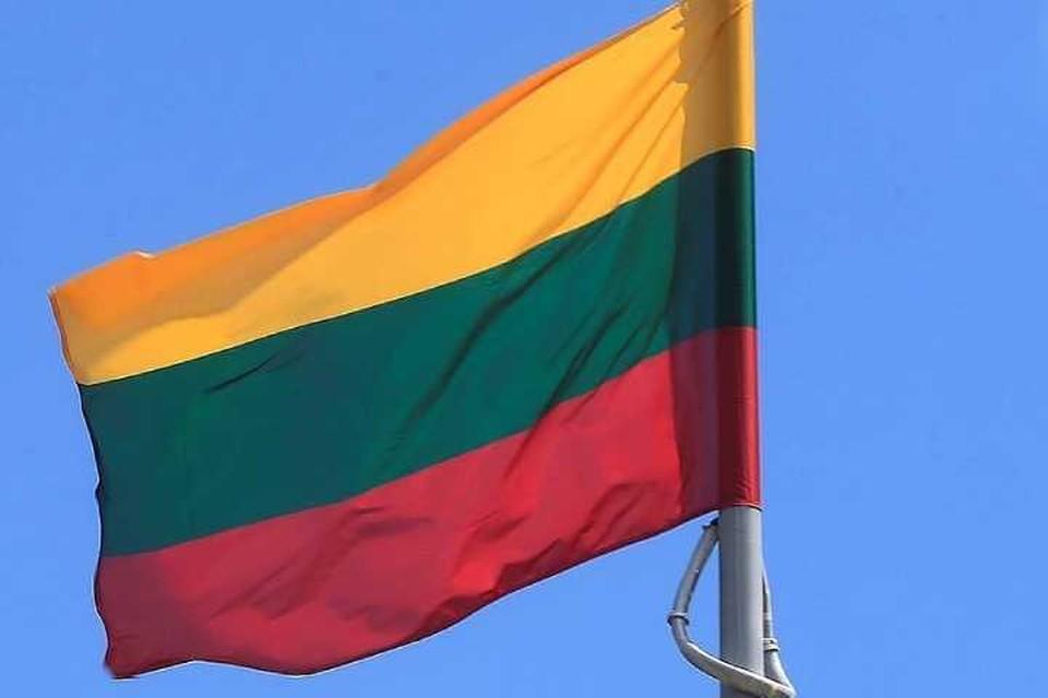 Глава МИД Литвы раскритиковал Эстонию за встречу Кальюлайд с Путиным
