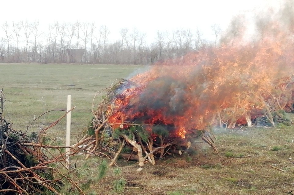 Пожароопасный сезон объявили в Алтайском крае