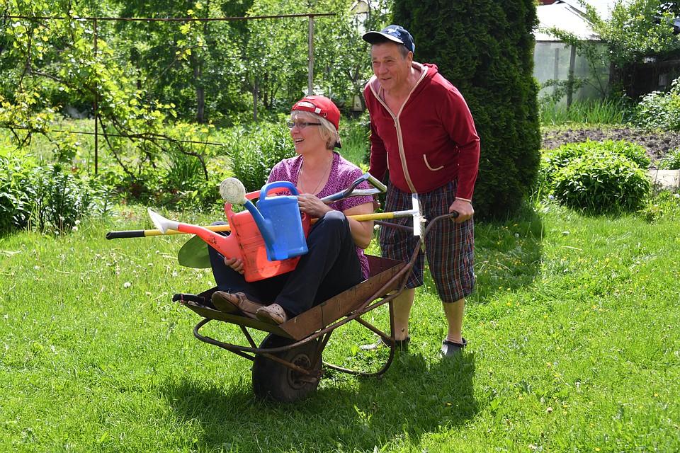 f9765ef98a9 Владимирцы избавляются от садов и дач