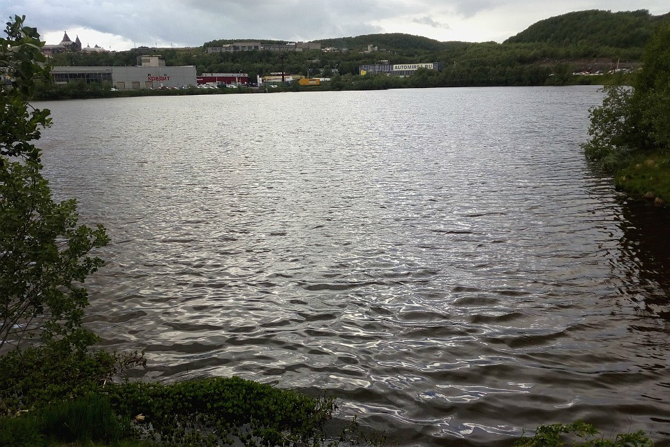 Social networks reported that Ice Lake was polluted with gasoline.