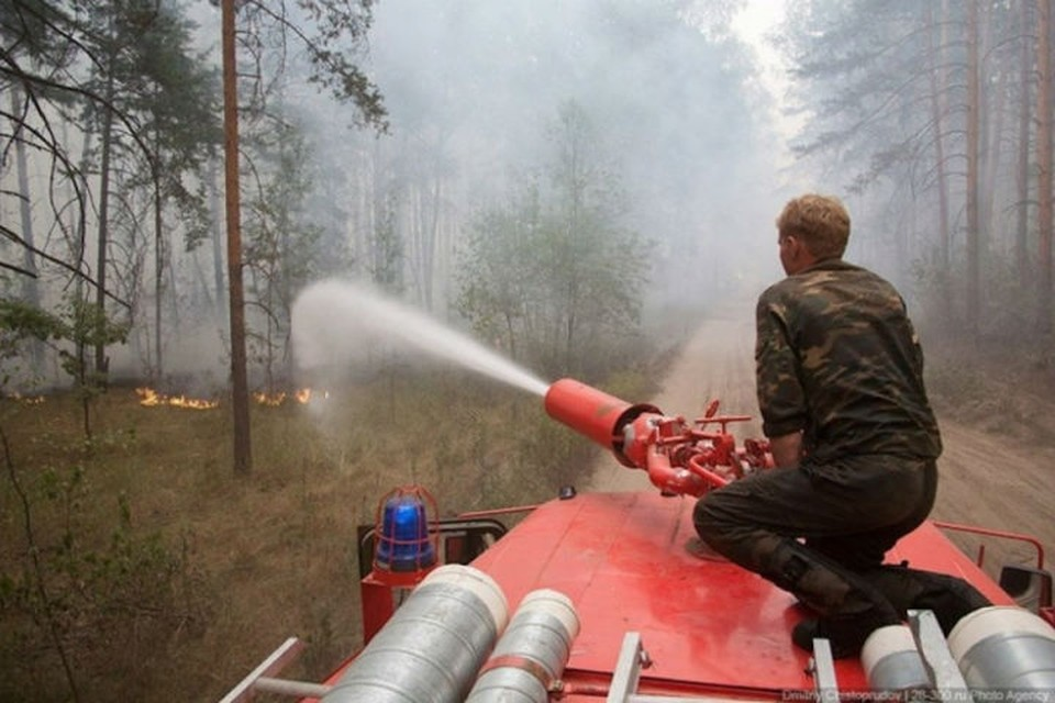 «Полный запрет на посещение лесов»: режим ЧС ввели в Советско-Гаванском районе из-за мощного пожара