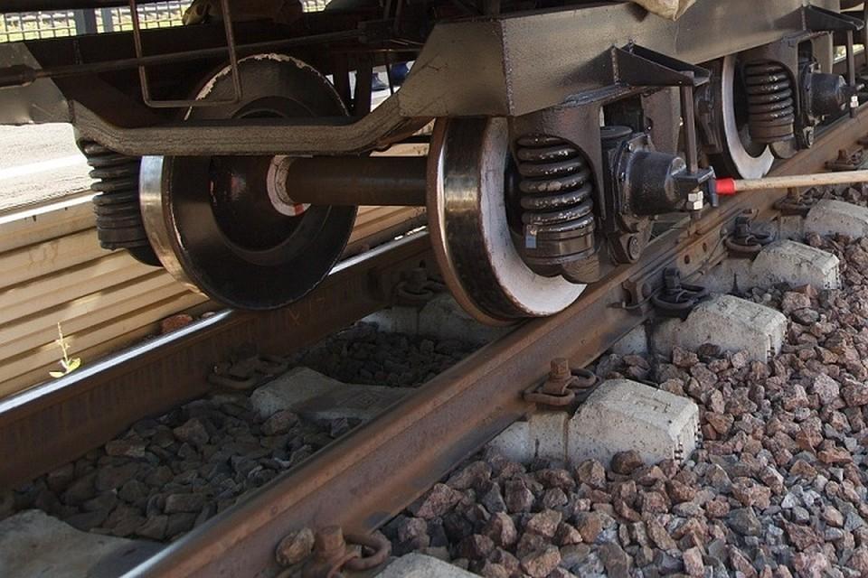 В Хабаровском крае двухлетнюю девочку сбило воздушной волной от поезда