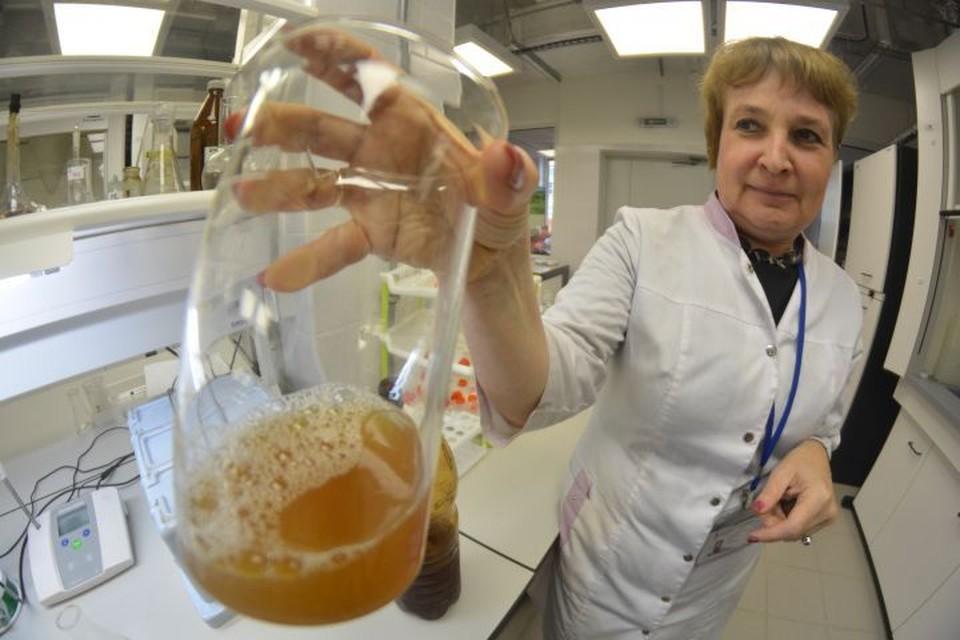 От нового пива голова поутру не будет болеть, уверяют исследователи.