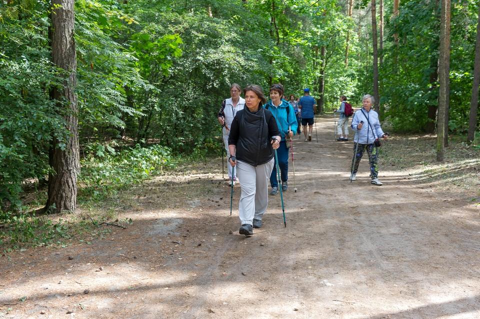 Огромная зеленая зона - популярное место отдыха в Выборгском и Калининском районах.