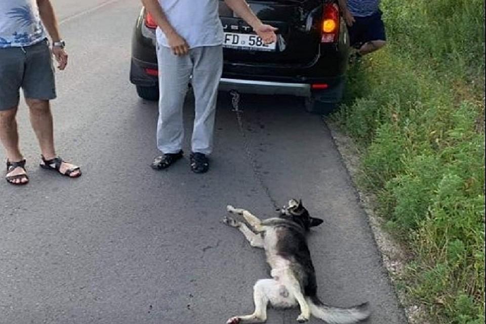 Скандально известный священник из Молдовы снова отличился: Чтобы наказать собаку за укус ребенка, он привязал ее к машине и протащил несколько километров