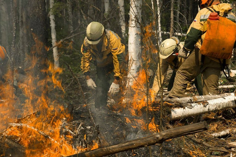Лесные пожары в Сибири: как десантники тушат тайгу: Фото: пресс-служба Авиалесоохраны