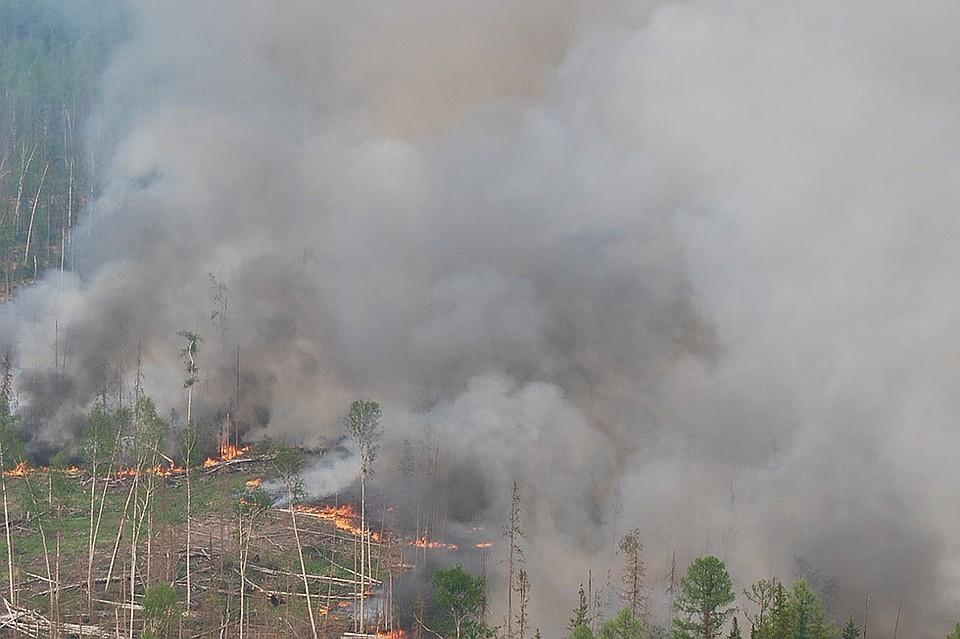 Сибирские пожары накрыли дымом полстраны Фото: Виктор Чавайн