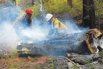 Площадь лесных пожаров в Красноярском крае достигла 1 миллиона 115 тысяч гектаров