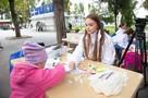 В Ростове-на-Дону детям рассказали о «выборах в сказочном лесу»
