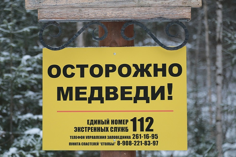 На Красноярских столбах три туриста забрались на Чертов палец, спасаясь от медведя-преследователя