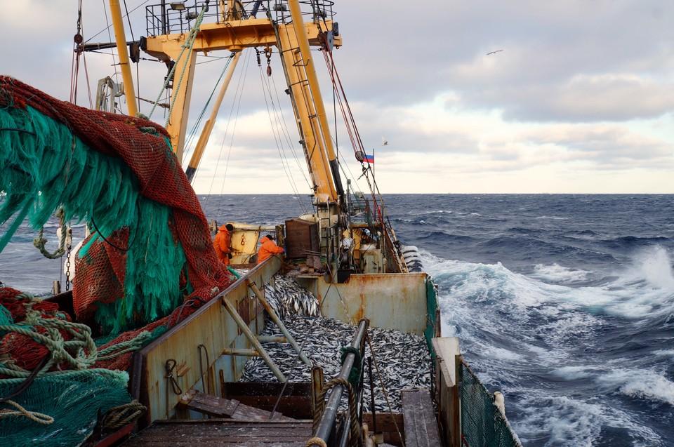 Российские рыбаки на промысле.