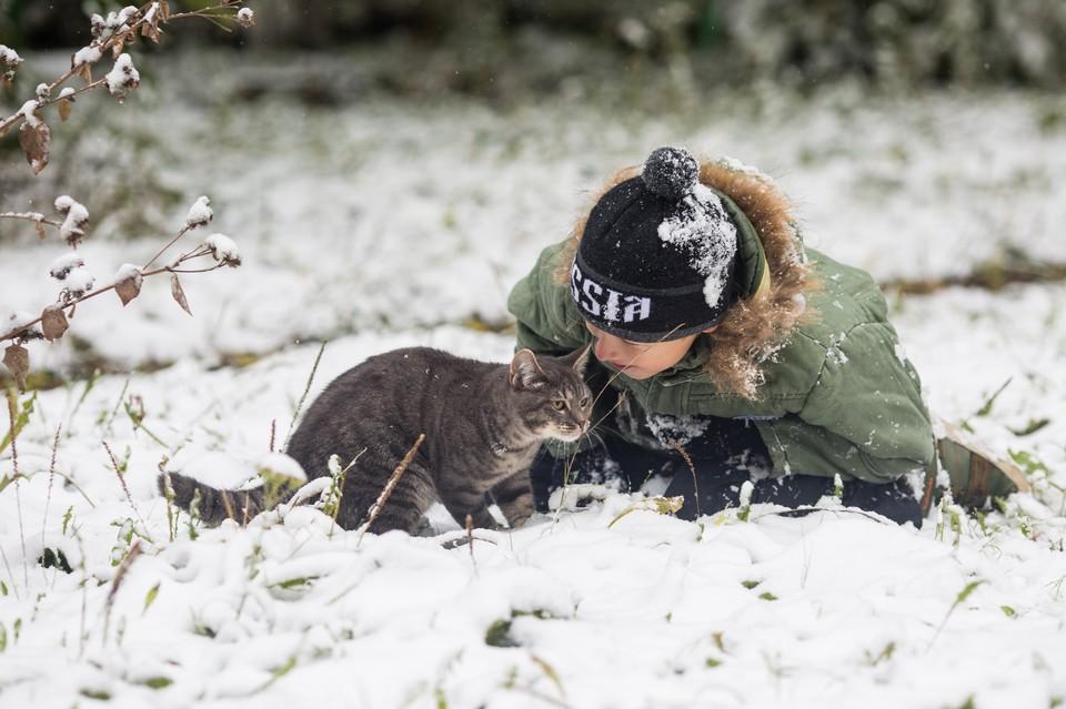 Скоро в Челябинске ляжет снег.