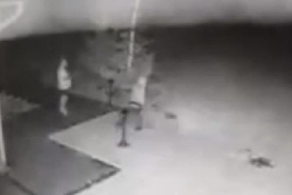 Появилось новое видео момента убийства экс-главы Киселевска. ФОТО: кадр видео