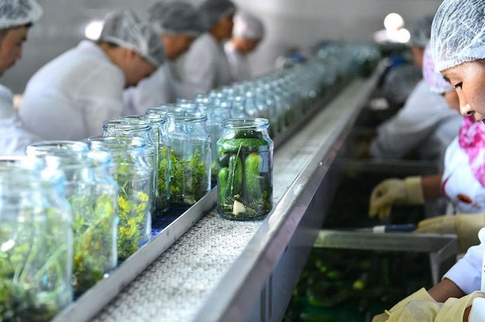При поддержке фонда предприятие по производству овощных маринадов расширило свое производство.
