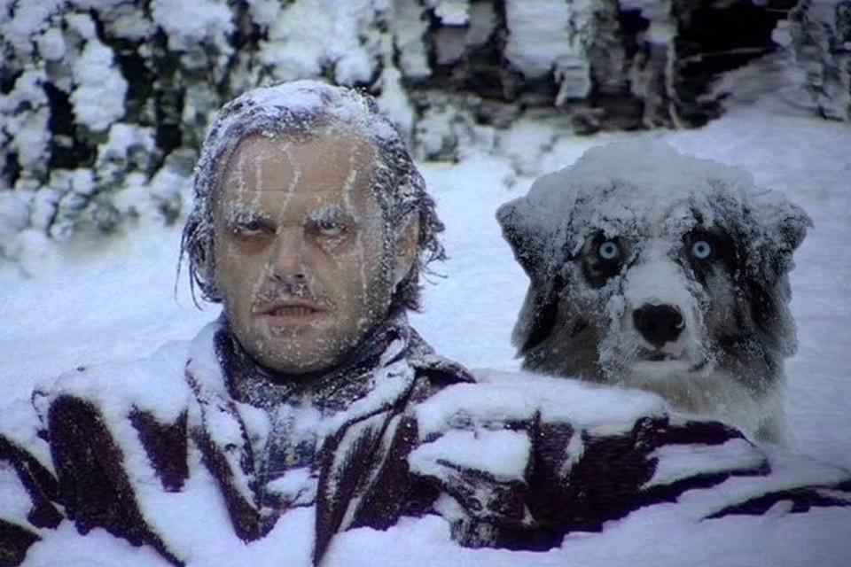 ТОП-6 советов для тюменцев от врачей, как не замёрзнуть и чем согреться в морозы. Фото: risovach.ru