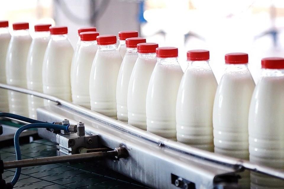 На Кубани выросло производство питьевого молока