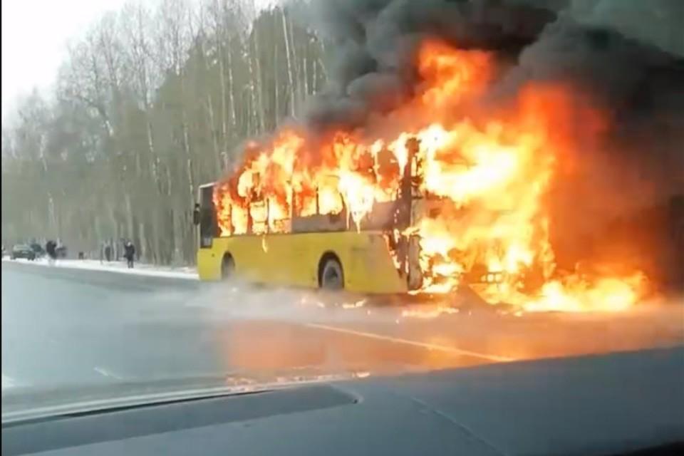 В Петербурге водитель вывел пассажиров из загоревшегося автобуса. Фото: скриншот видео.
