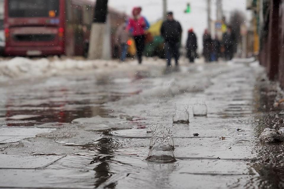 Синоптики обещают долгую аномальную оттепель